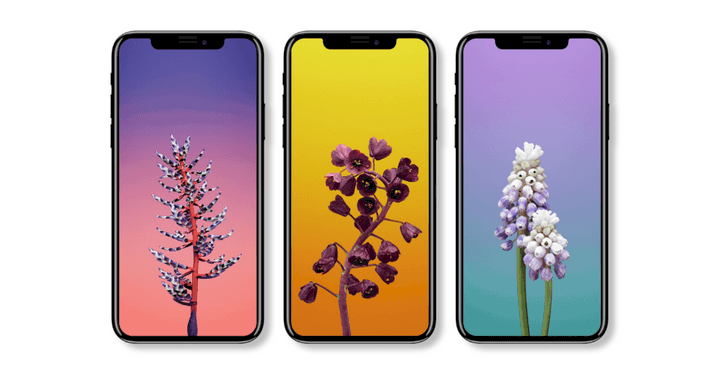 ios-11-stock-wallpapers