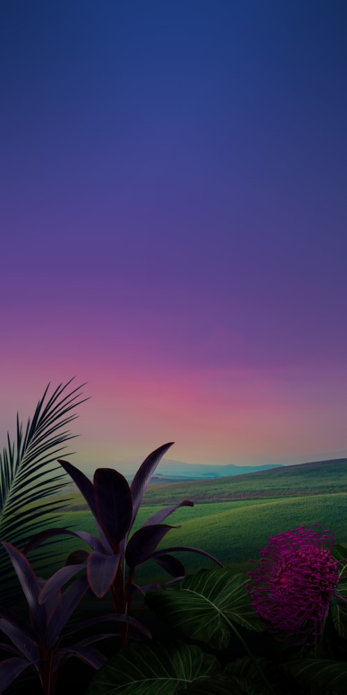 LG-Stylo-5-Stock-Wallpapers-10